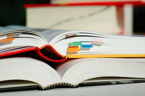 Five books for a novice investor