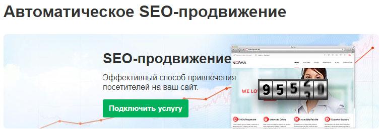 Reg.ru хостинг услуга SEO-продвижение