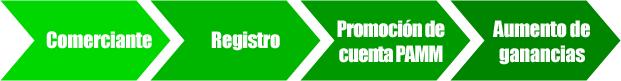 Comerciante-Registro-Promoción de cuenta PAMM-Aumento de ganancias